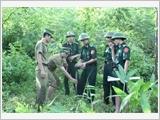 Thanh Hóa tăng cường lãnh đạo, chỉ đạo công tác xây dựng, bảo vệ chủ quyền, an ninh biên giới