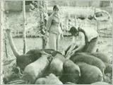 Công tác hậu cần trong Đại thắng mùa Xuân 1975 và vấn đề đặt ra hiện nay