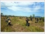 Một số vấn đề đặt ra trong công tác diễn tập chiến thuật hiện nay - từ thực tiễn ở Sư đoàn 309