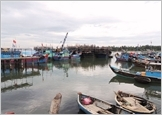 Những giải pháp phát triển ngành khai thác hải sản năm 2017