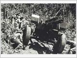Nghệ thuật sử dụng lực lượng trong Chiến dịch Điện Biên Phủ