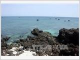 Khu bảo tồn biển Việt Nam