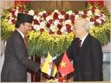 Tuyên bố chung về thiết lập quan hệ Đối tác toàn diện Việt Nam - Brunei Darussalam