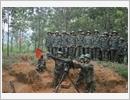 Lực lượng vũ trang Yên Bái phát huy truyền thống, cống hiến tài năng, xứng danh Bộ đội Cụ Hồ