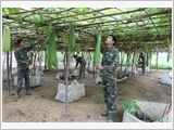 Promoting farming, production, and thrift to improve soldiers' living standard