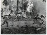 越南捍卫西南边境战争胜利纪念典礼在胡志明市隆重举行