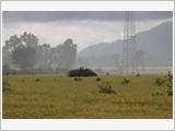 安江省军事指挥部做好国防管理的参谋工作