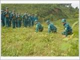 安沛省专心致志建设强大的地方武装力量