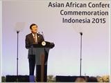 Chủ tịch nước Trương Tấn Sang: Ưu tiên tăng cường kết nối Á ‒ Phi