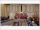 阮志咏上将率团出席第五届日本与东盟成员国的防卫副部长级会议