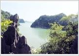 越南沿海和岛屿上的国家生态园