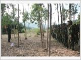 提高93团预备役训练和演习质量