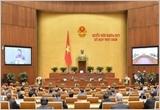越南国会批准《越南与欧盟自由贸易协定》