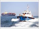 Công ty Hoa tiêu Tân Cảng đổi mới, nâng tầm phát triển