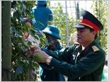 Lực lượng vũ trang tỉnh Bà Rịa - Vũng Tàu làm theo lời Bác dạy