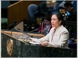 Vietnam reiterates commitment to UN Charter's purpose, principles