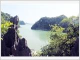 Vietnam's coastal and island national parks