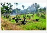 Lessons learnt from Soc Trang province's defensive zone exercise