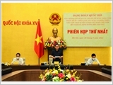 The building of a socialist rule-of-law State in the Documents of the 13th National Party Congress